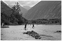Men paddleboarding on river, Waipio Valley. Big Island, Hawaii, USA ( black and white)