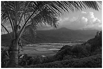 Hanalei Valley from above, sunset. Kauai island, Hawaii, USA (black and white)
