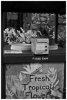 Self-serve fresh tropical flowers stand. Kauai island, Hawaii, USA ( black and white)