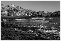 Punaluu beach. Big Island, Hawaii, USA ( black and white)