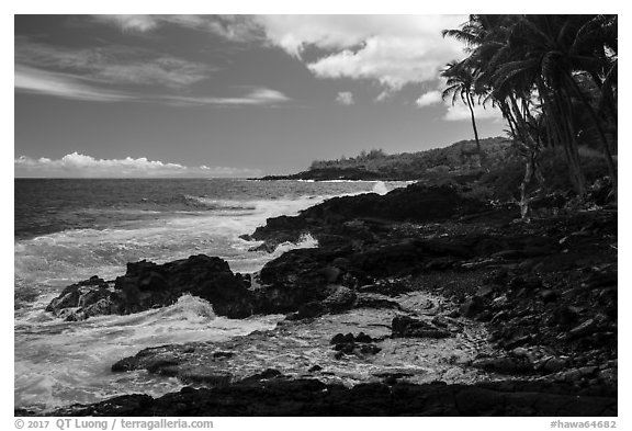 Jagged lava coastline, Puna. Big Island, Hawaii, USA (black and white)
