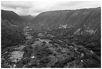Aerial view of farmlands, Waipio Valley. Big Island, Hawaii, USA ( black and white)