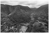 Aerial view of fields and steep slopes, Waipio Valley. Big Island, Hawaii, USA ( black and white)