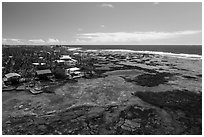 Aerial view of Kapoho tidepools and houses. Big Island, Hawaii, USA ( black and white)