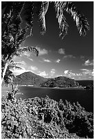 View over Masefau Bay. Tutuila, American Samoa ( black and white)