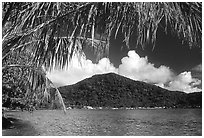 Masefau Bay and Village. Tutuila, American Samoa ( black and white)