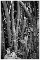 Girl and bamboo, Ban Xan Hai. Laos (black and white)