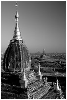 Gilded temples seen from Dhammayazika. Bagan, Myanmar (black and white)