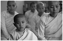 Nuns, Zayar Theingi Nunnery, Sagaing. Myanmar ( black and white)