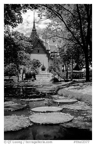 Lotus pond and Ayuthaya-style temple. Muang Boran, Thailand (black and white)