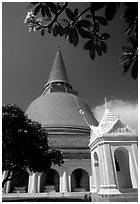 Phra Pathom Chedi, the tallest buddhist monument in the world. Nakhon Pathom, Thailand ( black and white)