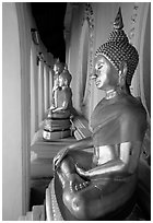 Buddhas images in gallery, Phra Pathom Wat. Nakhon Pathom, Thailand ( black and white)
