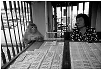 Lottery tickets vendor and monkey, San Phra Kan. Lopburi, Thailand (black and white)