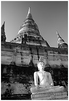 Buddha statue and Wat Chai Mongkon. Ayutthaya, Thailand ( black and white)