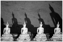 Buddha images and shadows, Wat Chai Mongkon. Ayutthaya, Thailand ( black and white)