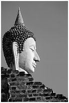 Buddha head, Wat Chai Mongkon. Ayutthaya, Thailand ( black and white)