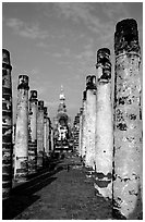 Ruined columns. Sukothai, Thailand (black and white)