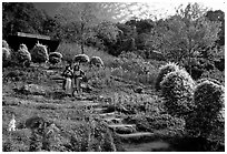 Children in traditinal hmong dress in flower garden. Chiang Mai, Thailand ( black and white)