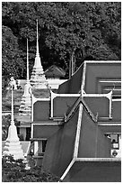 Temple and chedis from above. Bangkok, Thailand ( black and white)