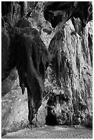 Rock climbers on limestone cliff, Railay. Krabi Province, Thailand (black and white)