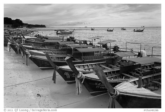 Longtail boats lined up, Ao Ton Sai, Ko Phi Phi. Krabi Province, Thailand (black and white)