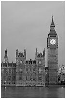 Big Ben tower, palace of Westminster, dawn. London, England, United Kingdom ( black and white)