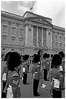 Musicians of the guard during the guard mounting in front of Buckingham Palace. London, England, United Kingdom (black and white)