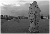 Circle of standing stones in pasture, Avebury, Wiltshire. England, United Kingdom (black and white)
