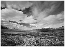 Clouds, tundra, and lake along Denali Highway in autumn. Alaska, USA ( black and white)