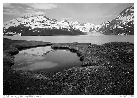 Pond, mountains, and glaciers across Harriman Fjord. Prince William Sound, Alaska, USA