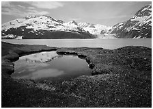 Pond, mountains, and glaciers across Harriman Fjord. Prince William Sound, Alaska, USA ( black and white)