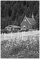 White flowers,  picket fence, red church, and forest. Seward, Alaska, USA ( black and white)