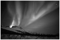 Aurora Borealis and starry night sky, Brooks Range. Alaska, USA ( black and white)