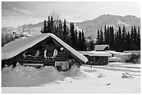 Heavily snow-covered cabins in winter. Wiseman, Alaska, USA ( black and white)