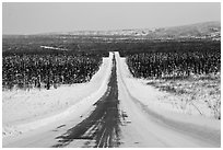 North Slope Haul Road in winter. Alaska, USA (black and white)