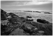 Tide pool with sea stars at sunset, Weston Beach. Point Lobos State Preserve, California, USA (black and white)