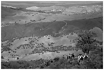Group of Hikers descending slopes, Mt Diablo State Park. California, USA ( black and white)