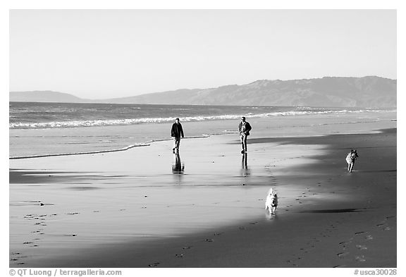 People and dogs strolling on beach near Fort Funston,  late afternoon, San Francisco. San Francisco, California, USA