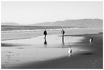 People and dogs strolling on beach near Fort Funston,  late afternoon, San Francisco. San Francisco, California, USA (black and white)