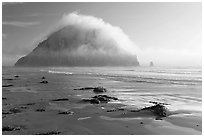 Beach with seaweed, and Morro Rock capped by afternoon fog. Morro Bay, USA ( black and white)