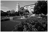 Bing Wing of Green Library and Hoover Tower,  late afternoon. Stanford University, California, USA ( black and white)