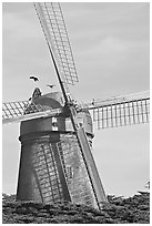 Dutch Mill. San Francisco, California, USA (black and white)