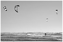 Multitude of kite surfing wings, afternoon. San Francisco, California, USA (black and white)