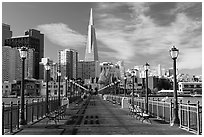 Pier 7 and Transamerica Pyramid, morning. San Francisco, California, USA (black and white)