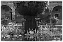 Moorish-style fountain and  courtyard arches. San Juan Capistrano, Orange County, California, USA ( black and white)
