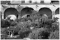 Garden in the entrance courtyard. San Juan Capistrano, Orange County, California, USA (black and white)