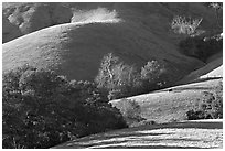 Pastures and hills. Morro Bay, USA ( black and white)