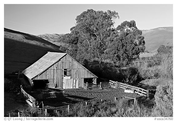 Barn and cattle-raising area. Morro Bay, USA (black and white)