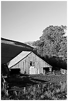Old wooden barn. Morro Bay, USA ( black and white)