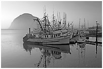 Fishing fleet and Morro Rock, sunset. Morro Bay, USA ( black and white)